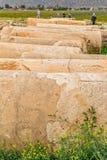 Pasargadae columns remains Royalty Free Stock Photography