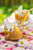 Pasas de las nectarinas de las peras del smoothie del jardín de la bebida del verano Fotografía de archivo
