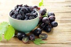 Pasas orgánicas naturales de las uvas secadas Foto de archivo libre de regalías