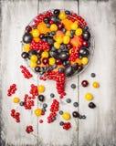 Pasas rojas frescas, ciruelos, zarzamoras, cereza, arándanos, albaricoques en una cesta en un fondo blanco, visión superior Foto de archivo libre de regalías