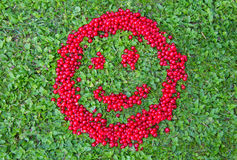 Pasas rojas sonrientes Fotos de archivo libres de regalías