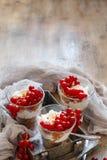 Pasas rojas y yogur Imágenes de archivo libres de regalías