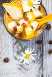 Pasas sabrosas del smoothie de la fruta de postre Imagen de archivo libre de regalías