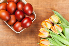 Paschal eggs in the basket and fresh tulips Royalty Free Stock Photography