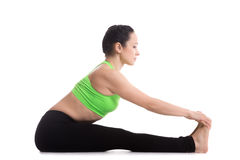 Paschimottanasana yoga pose Royalty Free Stock Image