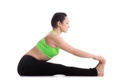 Paschimottanasana yoga pose Royalty Free Stock Image