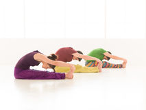 Paschimottasana posture Royalty Free Stock Photo