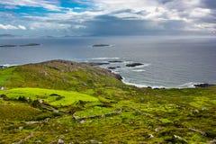Pascoli alla costa dell'Irlanda Immagini Stock Libere da Diritti