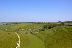 Pascoli dei wolds di Yorkshire Fotografia Stock