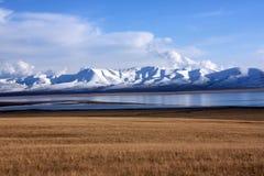Pascoli del lago canzone-Kul, Kirghizistan Fotografia Stock