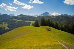 Pascoli della sorgente in montagne della dolomia dell'Italia Fotografie Stock Libere da Diritti