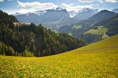 Pascoli della sorgente in montagne della dolomia dell'Italia Fotografia Stock Libera da Diritti