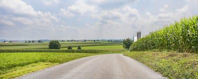 Pascoli di agricoltura del bordo della strada Fotografia Stock