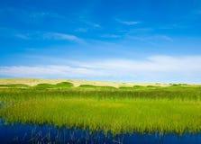 Pascoli e cielo di estate Immagini Stock Libere da Diritti