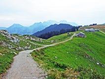 Pascoli e prati alpini nella regione di Obertoggenburg, Stein fotografia stock libera da diritti