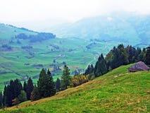 Pascoli e prati alpini nella regione di Obertoggenburg, Stein immagini stock libere da diritti