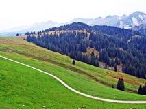 Pascoli e prati alpini nella regione di Obertoggenburg, Stein immagine stock