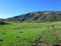 Pascoli verdi alla valle di Avola di Drakensberg del sud fotografie stock libere da diritti