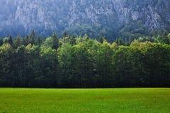 Pascolo in alpi slovene Immagine Stock