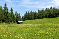 Pascolo alpino con le montagne, una capanna e un prato Fotografia Stock Libera da Diritti