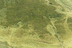 Pascolo alpino nelle alpi bavaresi Fotografia Stock Libera da Diritti