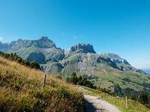 Pascolo alpino nelle alpi francesi, Francia Immagini Stock Libere da Diritti