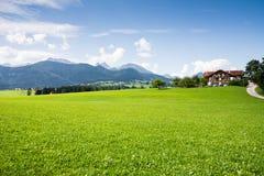 Pascolo in Baviera Immagine Stock Libera da Diritti