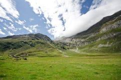 Pascolo dell'alta montagna Immagini Stock Libere da Diritti
