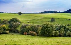 Pascolo della campagna e paesaggio Germania di agricoltura Fotografie Stock Libere da Diritti
