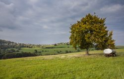 Pascolo della campagna e paesaggio Germania di agricoltura Immagini Stock