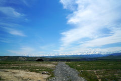 Pascolo della montagna della neve Fotografia Stock Libera da Diritti