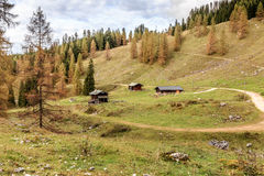 Pascolo della montagna di Berchtesgaden Fotografia Stock Libera da Diritti