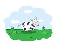 Pascolo della mucca Immagini Stock