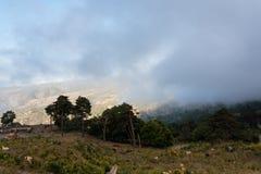 Pascolo della regione montana nella regione di Etna di Sicilia Immagini Stock Libere da Diritti