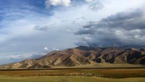 Pascolo di Bayanbulak al tramonto nella caduta Immagini Stock