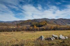 Pascolo di paesaggio di autunno di Xinjiang Cina Fotografia Stock