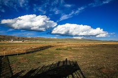 Pascolo di Ruoergai, Xiahe, Gannan, Cina fotografie stock libere da diritti