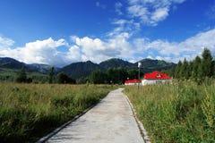 Pascolo di Tangbula Fotografia Stock