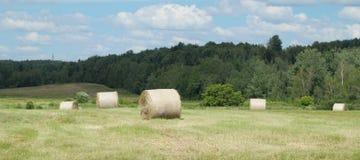 Pascolo rurale di panorama di agricoltura del paesaggio del prato del campo del paese delle balle di fieno dell'azienda agricola Immagini Stock