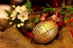 Pascua adornó los huevos Imagen de archivo