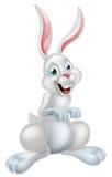 Pascua blanca Bunny Rabbit Imagenes de archivo