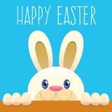 Pascua Bunny Peeking From Below Imágenes de archivo libres de regalías