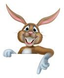 Pascua Bunny Pointing Imagenes de archivo