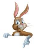 Pascua Bunny Rabbit Pointing Down Imágenes de archivo libres de regalías
