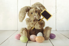 Pascua Bunny Themed Holiday Occasion Image Fotos de archivo libres de regalías