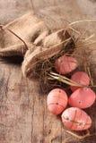 Pascua coloreó los huevos Foto de archivo