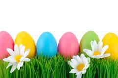 Pascua coloreó los huevos en la hierba. Imágenes de archivo libres de regalías