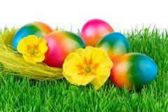 Pascua coloreó los huevos en hierba verde Fotografía de archivo