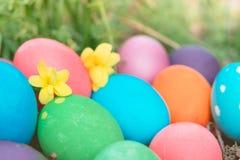 Pascua domingo, pascua feliz, los huevos de Pascua coloridos caza fondos del concepto de pascua de las decoraciones del día de fi Foto de archivo