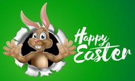 Pascua feliz Bunny Rabbit Sign libre illustration